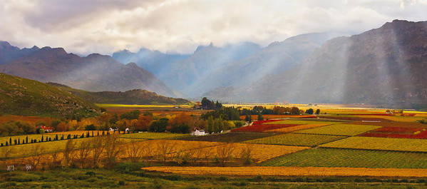 Landscape Canvas Print Poster featuring the photograph Autumn - Hex-river Valley by Basie Van Zyl