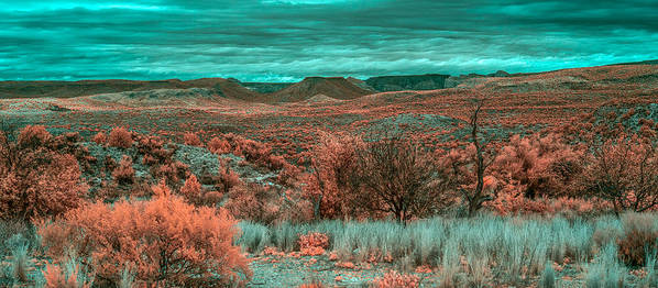 Butte Poster featuring the photograph Infrared Arizona by Paul Freidlund