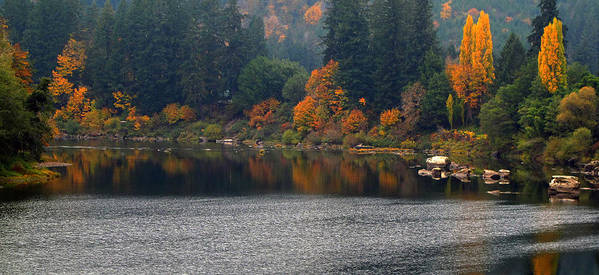 Autumn Poster featuring the photograph Autumn On The Umpqua by Suzy Piatt
