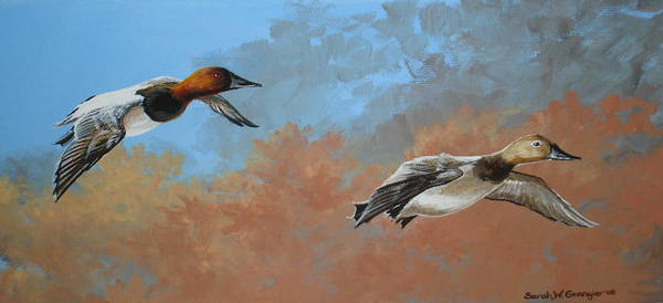 Ducks Poster featuring the painting Canvasbacks by Sarah Grangier