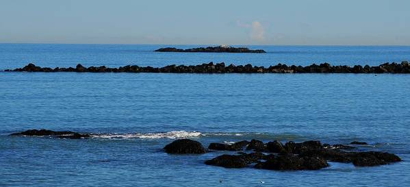 Rock Ledges And Calm Seas At Low Tide Poster featuring the photograph Rock Ledges And Calm Seas by Bill Driscoll