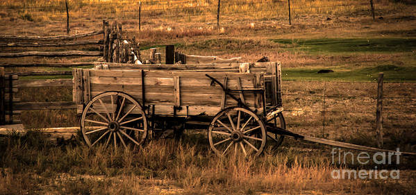 Freight Wagon Poster featuring the photograph Freight Wagon by Robert Bales