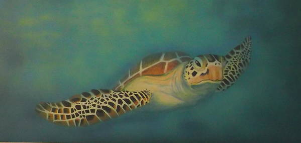 Underwater Poster featuring the painting Turtle by Amanda Machin