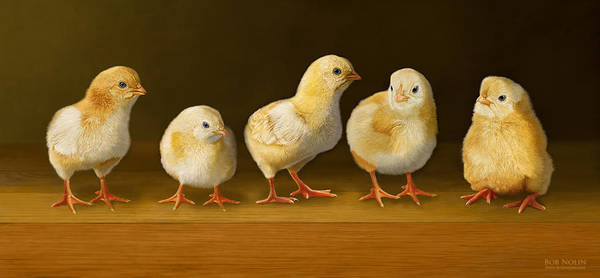 Chicks Poster featuring the digital art Five Chicks Named Moe by Bob Nolin