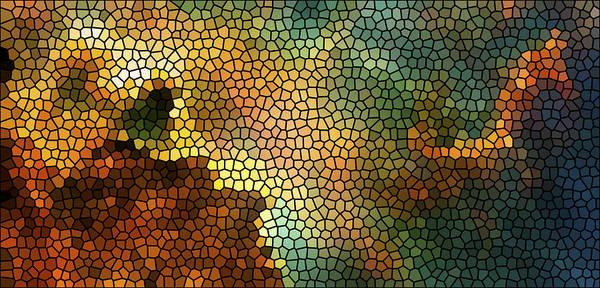 Nasa Images Poster featuring the photograph Carina Nebula Mosaic by Jennifer Rondinelli Reilly - Fine Art Photography