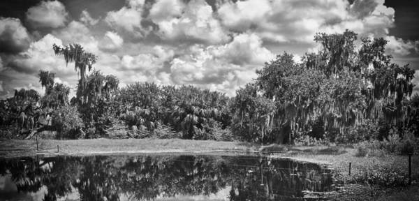 Florida Poster featuring the photograph Country Lake 2 by Skip Nall