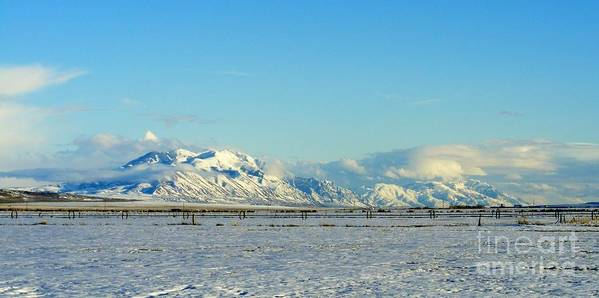 Farmland Poster featuring the photograph Farmland Winter View by Woody Wilson