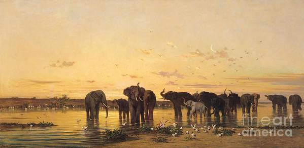 African Elephants (oil On Canvas) By Charles Emile De Tournemine (1812-72) Poster featuring the painting African Elephants by Charles Emile de Tournemine