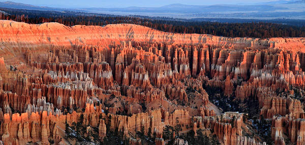 Bryce Poster featuring the photograph Glowing Sunrise In Bryce Canyon by Pierre Leclerc Photography