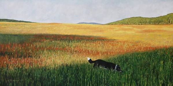 Dog Poster featuring the painting Missy In The Field by Allan OMarra