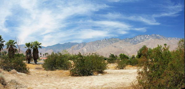 Desert Poster featuring the photograph Mojave Pan 2 by Chuck Shafer