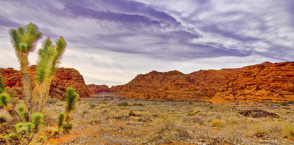Utah Poster featuring the digital art Snow Canyon by Ches Black