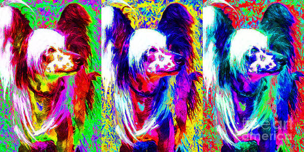 Animal Poster featuring the photograph Chinese Crested Dog Three 20130125 by Wingsdomain Art and Photography