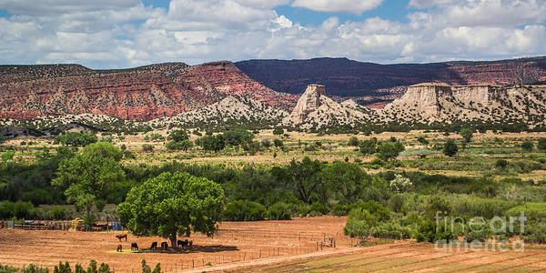 New Mexico Landscapes Poster featuring the photograph Jemez River Valley 1 by Jim McCain