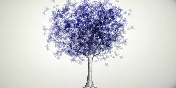 Maple Tree Poster featuring the digital art Maple Tree 3 by Syed Bilawal Kamal