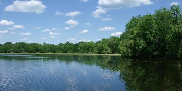 Water Poster featuring the photograph Harris Pond by Anna Villarreal Garbis