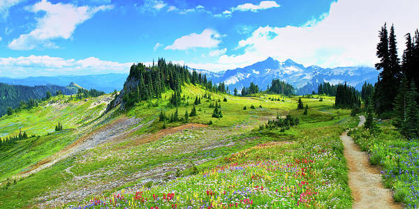 Horizontal Poster featuring the photograph Mount Rainier Summer Colors by Feng Wei Photography