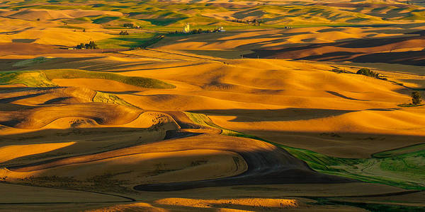 The Palouse Poster featuring the photograph Palouse Shadow Play by Dan Mihai