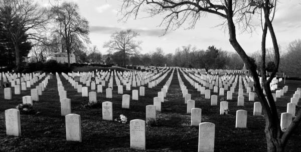 Arlington Cemetery Poster featuring the photograph Arlington National Cemetery by Todd Fox