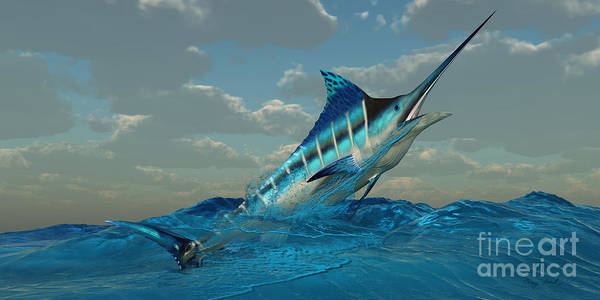 Blue Marlin Poster featuring the painting Blue Marlin Burst by Corey Ford