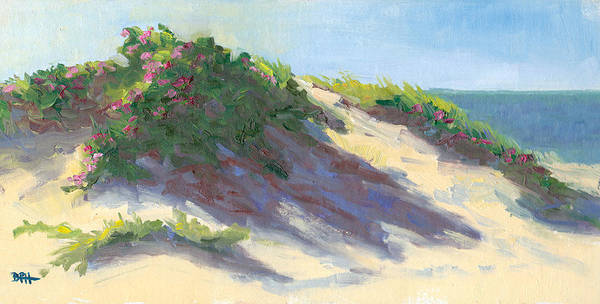 Cape Cod Poster featuring the photograph Dune Roses by Barbara Hageman