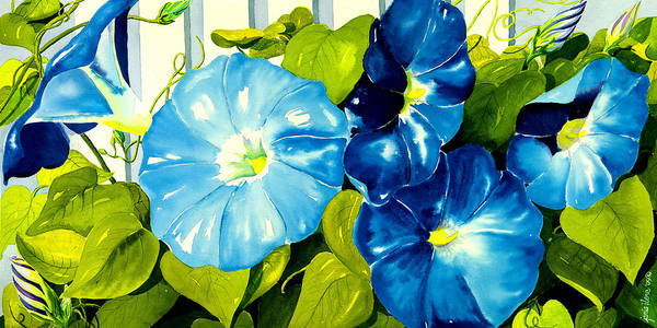 Flower Poster featuring the painting Morning Glories In Blue by Janis Grau