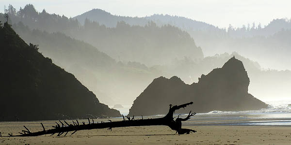 Oregon Poster featuring the photograph Oregon Coastal Beach by Bob Christopher