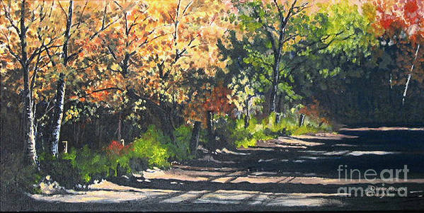 Nature Poster featuring the painting Shady Lane by Diane Ellingham