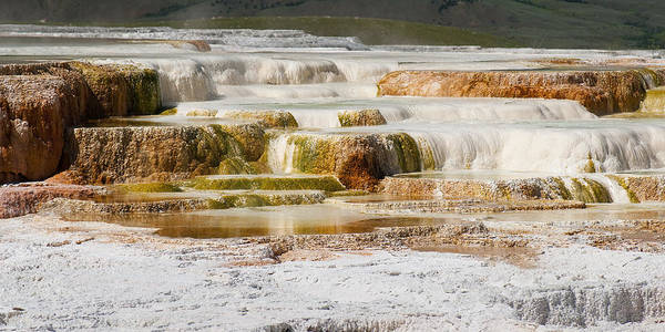 Mammoth Hot Springs Poster featuring the photograph Terrace Colors by Chad Davis