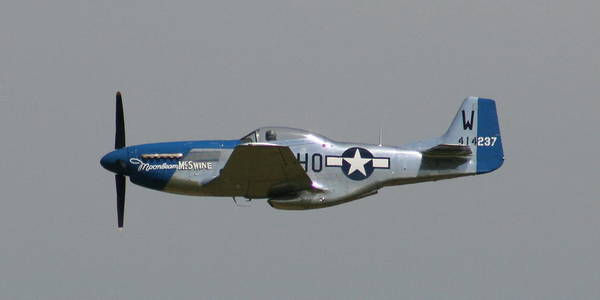 Airplane Poster featuring the photograph Wafb 09 P51 Mustang 1 - Darling Of The Sky by David Dunham