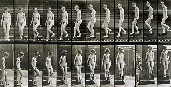Woman Descending Steps Poster featuring the photograph Woman Descending Steps by Eadweard Muybridge
