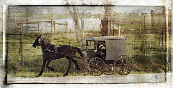 Amish Poster featuring the photograph Out For A Ride by Kathy Jennings