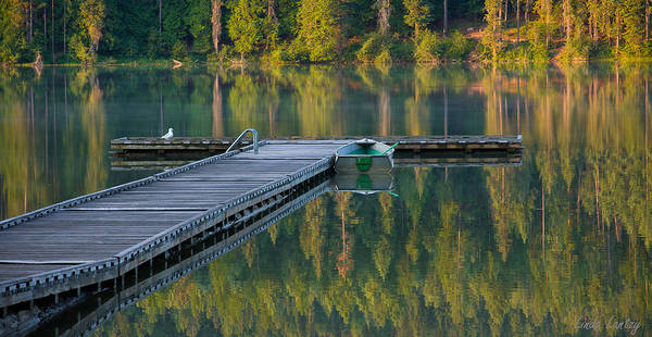 Dock Poster featuring the photograph Morning Light by Idaho Scenic Images Linda Lantzy