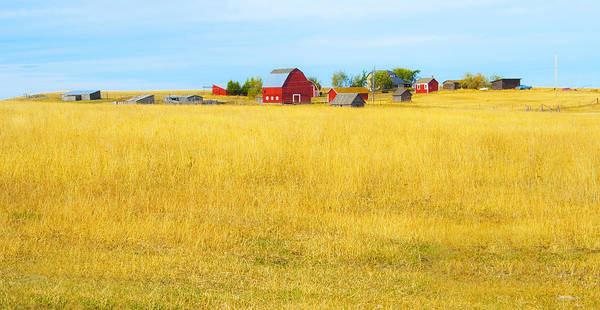 Barn Poster featuring the photograph Storybook Farm by Theresa Tahara