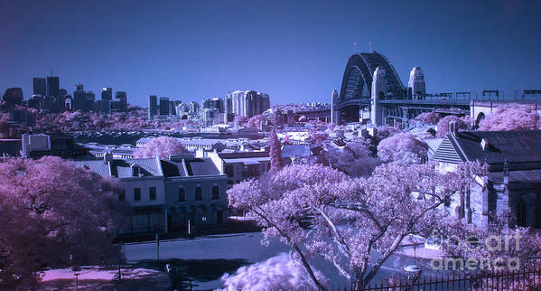 Infrared Poster featuring the photograph Sydney Harbour Bridge by Ken Lee
