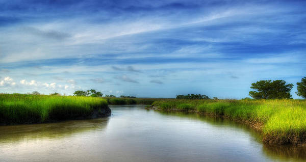 Marsh Poster featuring the photograph A Marsh At Jekyll Island by Greg and Chrystal Mimbs