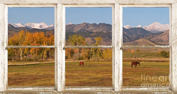 Horses Poster featuring the photograph Horses And Autumn Colorado Front Range Picture Window View by James BO Insogna