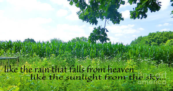 Inspirational Quote Poster featuring the photograph Like The Rain by Tina M Wenger