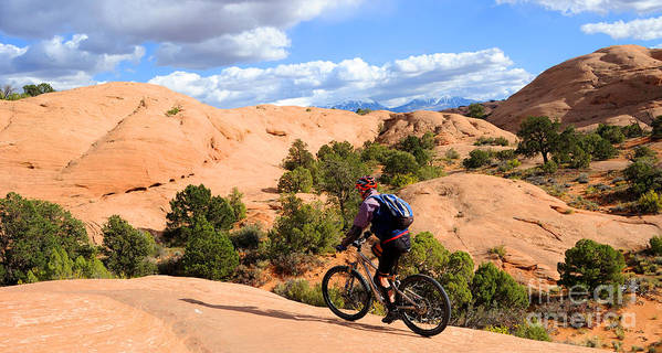 Moab Poster featuring the photograph Mountain Biking Moab Slickrock Trail - Utah by Gary Whitton