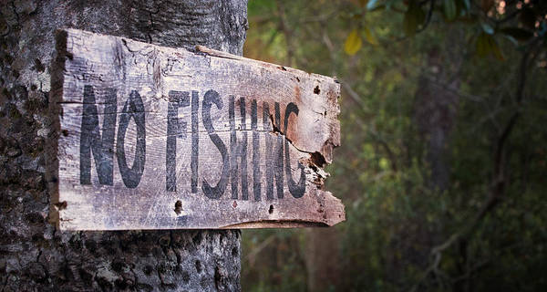 Signs Poster featuring the photograph No Fishing by Brenda Bryant