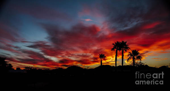Sunrise Poster featuring the photograph Wonderful Sunrise by Robert Bales