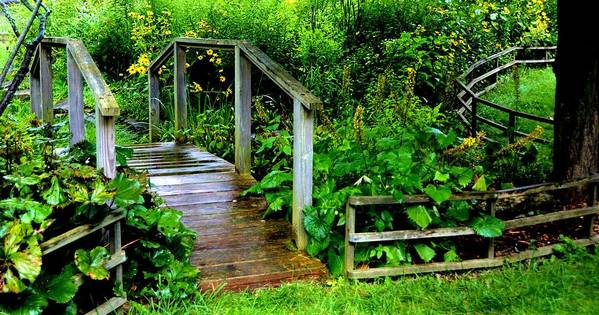 Nature Poster featuring the photograph Foot Bridge And Fence by Richard Jenkins