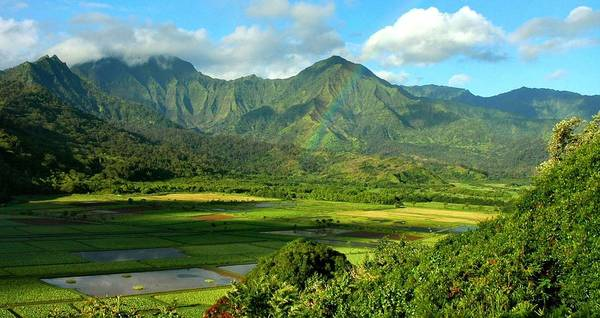 Hawaii Poster featuring the photograph Hanalei Valley Rainbow by Stephen Vecchiotti