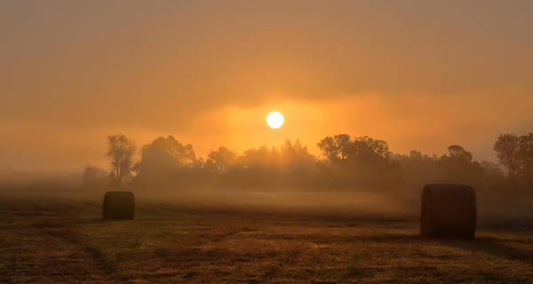 Landscape Poster featuring the photograph Morning On The Farm by Ron McGinnis