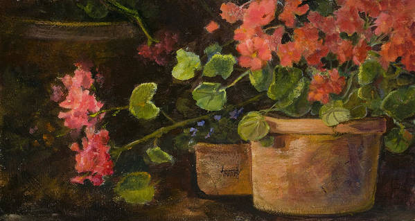 Flowers Poster featuring the painting Pots Of Geraniums by Jimmie Trotter