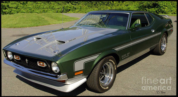 Mustang Poster featuring the photograph Boss 351 Mustang by James C Thomas