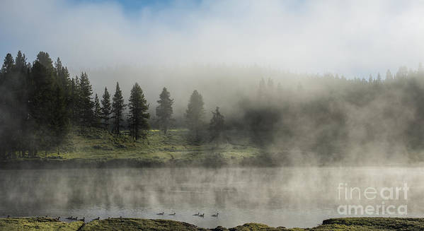Yellowstone;river;fog;mist;scenic;landscape;panoramic;national;park;sandra Bronstein;trees;clouds;scenics;landscapes;yellowstone National Park;wyoming;western;united;states;tourism;travel;photography;iconic;parks;out West;moody;misty;rivers;yellowstone River;morning;horizontal;sunrise;summer;fine Art Prints;canvas;acrylic;cards;greeting Cards;waterscapes; Poster featuring the photograph Morning Fog On The Yellowstone by Sandra Bronstein