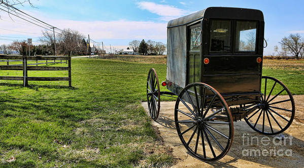 Amish People Poster featuring the photograph Traditional Amish Buggy by Lee Dos Santos