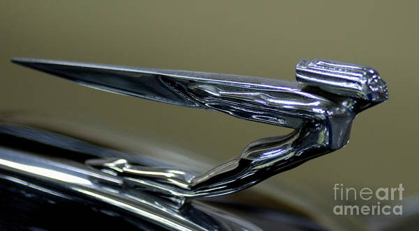 Hood Ornament Poster featuring the photograph Hood Ornament by Ronald Grogan