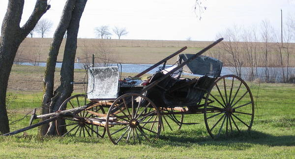 Poster featuring the photograph Old Wagon by Amy Hosp